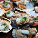 Da Nang Seafood Trail