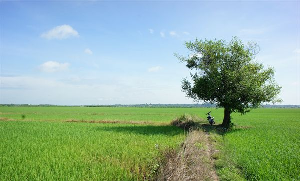 Hire a bike and take your kids around Hoi An city
