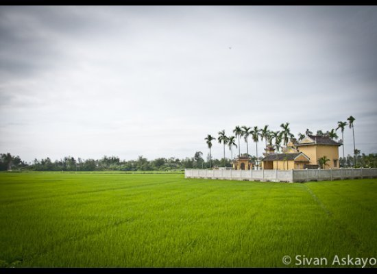 Tra Que Village