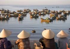 Ho Chi Minh-My Tho-Ben Tre